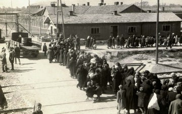 Birkenau a group of jews walking towards the gas chambers and crematoria
